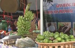 Quảng Nam đồng loạt triển khai hội chợ nông sản vùng cao
