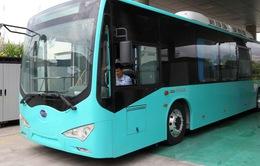 Xe bus ở Thâm Quyến (Trung Quốc) chuyển sang chạy bằng điện