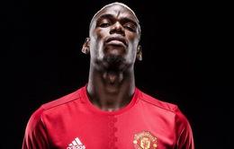 Vì Ronaldo, Paul Pogba báo tin cực buồn cho Man Utd