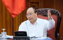 Không cấp mới giấy phép cho doanh nghiệp nhập khẩu phế liệu vào Việt Nam