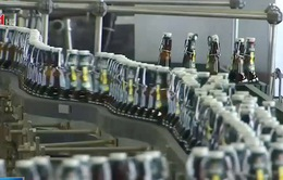 Ngành sản xuất bia tại Đức hưởng lợi nhờ thời tiết nắng nóng