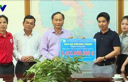 Trao tặng 97 con bò cho người nghèo ở tỉnh Khánh Hòa