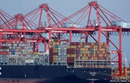 Chiến tranh thương mại Mỹ - Trung: Cơ hội và thách thức với doanh nghiệp Việt