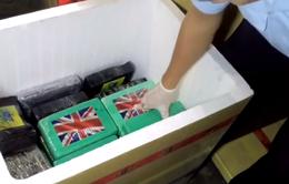 100 bánh cocaine trong container nhập cảng Cái Mép