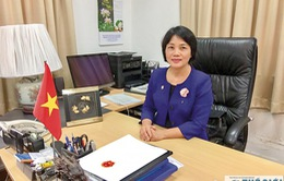 Singapore - Việt Nam: Nhiều tiềm năng phát triển quan hệ Đối tác Chiến lược
