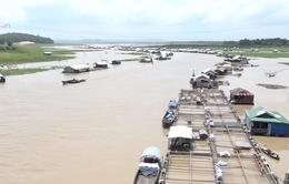 Đồng Nai: Làng bè La Ngà ảm đạm sau vụ hàng nghìn tấn cá chết