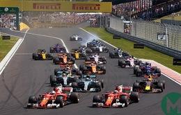 Trường đua Hungaroring: Tượng đài của giải đua xe F1