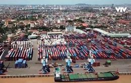 Tăng giá phí bốc xếp đối với DN vận tải nước ngoài không làm tăng chỉ số CPI