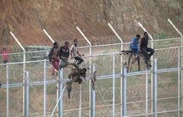 Hàng trăm người di cư vượt biên vào Tây Ban Nha
