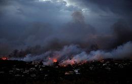 Nhiều sai lầm trong chữa cháy rừng tại Hy Lạp