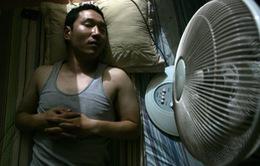 Bật quạt thẳng vào người khi ngủ có tốt cho sức khoẻ không?