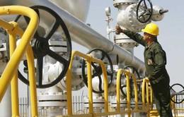 Iran khuyến khích giới đầu tư giúp thúc đẩy kinh tế của đất nước