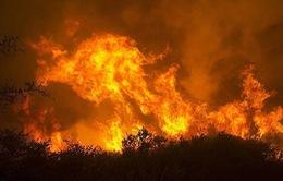 17 người mất tích do cháy rừng tại California