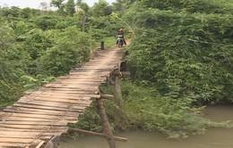 Nỗi lo cầu tạm trong mùa mưa lũ tại Đắk Nông