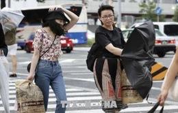 Hàng chục người bị thương do bão Jongdari đổ bộ vào Nhật Bản