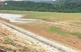 30% hồ chứa xuống mực nước chết - Bình Định phân vùng cứu lúa