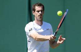 Andy Murray đã từng nghĩ đến chuyện nghỉ hưu