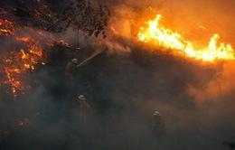 Cháy rừng ở Mỹ làm 6 người thiệt mạng và hàng trăm ngôi nhà bị phá hủy