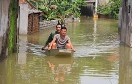 """Mênh mông biển nước """"bủa vây"""" hơn 3.000 hộ dân Chương Mỹ, Hà Nội"""