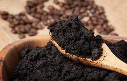 Đài Loan (Trung Quốc) sản xuất pin từ bã cà phê