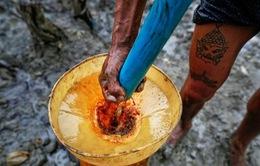 Nhọc nhằn nghề khoan dầu bằng tay ở Myanmar