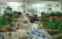 Doanh nghiệp nhựa Việt nỗ lực để tham gia vào chuỗi giá trị