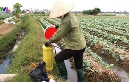 Khuyến cáo khi phun thuốc bảo vệ thực vật
