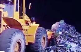 TP.HCM: Người dân khổ sở vì mùi hôi thối của rác