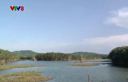 Đánh giá tác động môi trường nhà máy giấy ở Quảng Ngãi