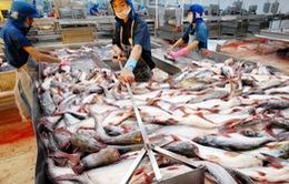 Trung Quốc giảm thuế nhập khẩu hàng thủy sản Việt Nam