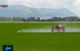 Kỹ sư trẻ ở An Giang chế tạo máy phun thuốc trừ sâu không người lái