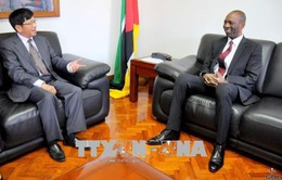 Mozambique hoan nghênh doanh nghiệp Việt Nam sang đầu tư kinh doanh