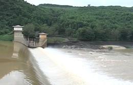 Quảng Ngãi: Điều tiết nước cho đập dâng Thạch Nham chống hạn