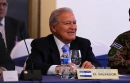Tăng cường hợp tác Việt Nam - El Salvador