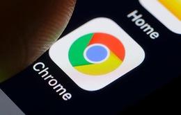 Bạn có biết Google Chrome đang phổ biến đến mức độ nào?