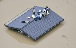 Mưa lũ nghiêm trọng tại Nhật Bản: Số người thiệt mạng và mất tích không ngừng tăng