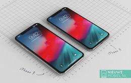 iPhone giá rẻ sẽ có 5 màu?