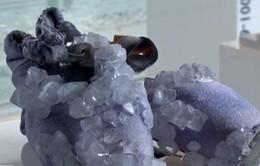 Tái chế chất thải cơ thể thành đồ trang sức