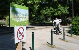 Pháp: Strasbourg tiên phong cấm thuốc lá trong công viên công cộng