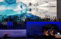 Giải nhiệt trong quán bar làm từ băng tại Berlin, Đức