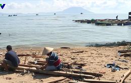 Khánh Hòa: Sản lượng thủy sản nuôi trồng giảm đột biến