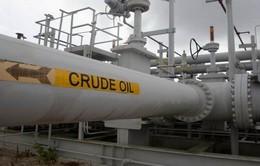 Ấn Độ trở thành đối tác nhập dầu thô hàng đầu của Mỹ