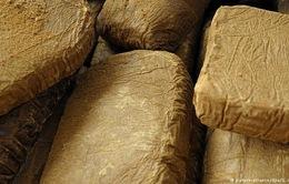 Italy: Phát hiện 20 tấn ma túy trên vùng biển quốc tế