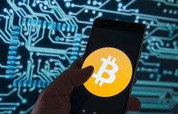 Vì sao các hãng công nghệ cấm ứng dụng đào tiền ảo
