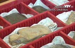 Tiếp nhận cổ vật 4.000 năm tuổi từ phía Đức