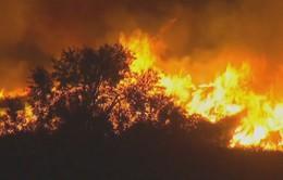 Vụ cháy rừng lịch sử bang California, Mỹ: Cộng đồng người Việt sẵn sàng phương án sơ tán
