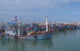 Huy động nguồn lực xây dựng 5 trung tâm nghề cá lớn trên cả nước