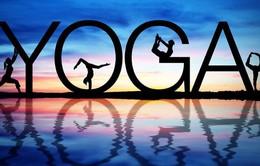 Bạn đã biết gì về Yoga hiện đại?