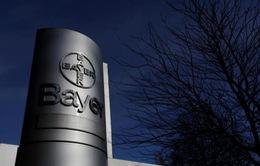 Bayer lên tiếng sau phán quyết đối với Monsanto
