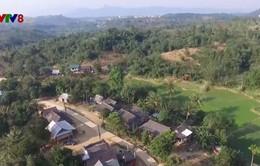 Phòng chống ma túy dựa vào cộng đồng ở vùng biên Quảng Trị